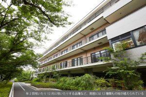 メモリークリニック御茶ノ水(東京都文京区)