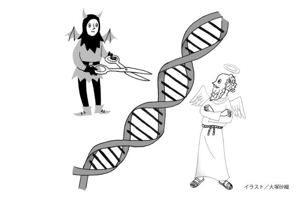 「ゲノム編集」にアナログ世代の声を